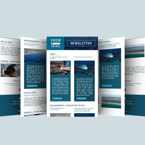 CRCM Newsletter template